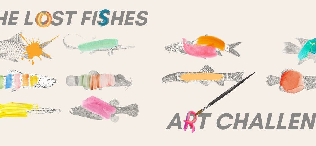 Mikolji is one of the judges at Shoal's The Lost Fishes Art Challenge